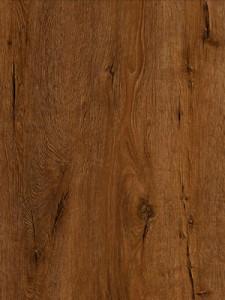 Sierra Nevada Oak